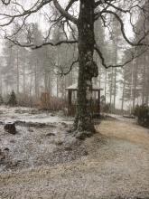 7 maj 2017 Fortfarande snö